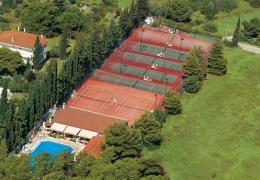 Sunny Sports Club